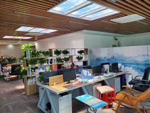 Artificial Skylights Office
